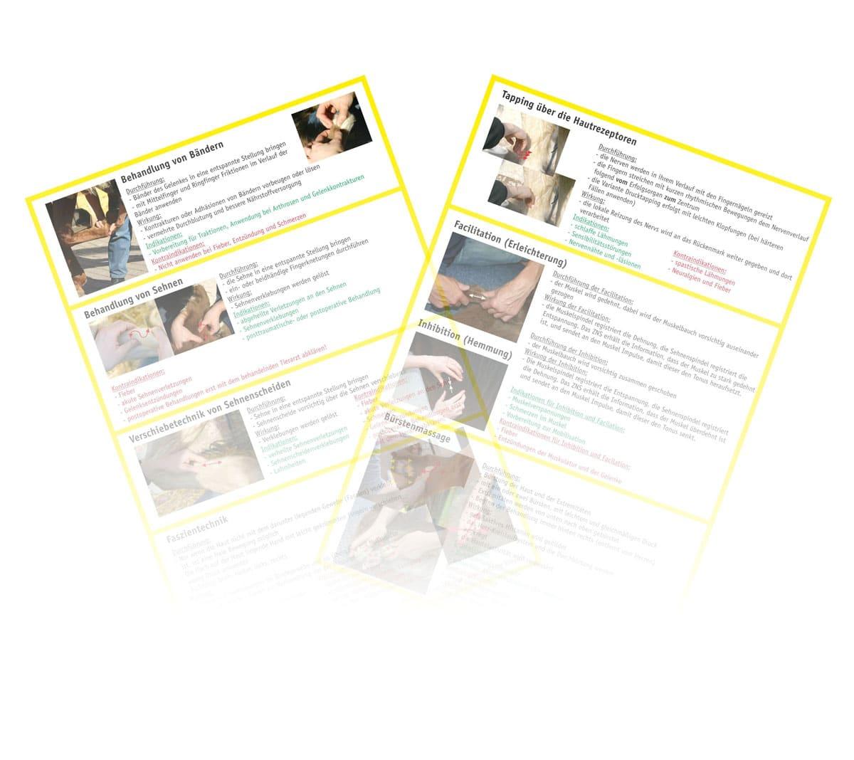Behandlung von Bändern und Sehnen HUND & PFERD