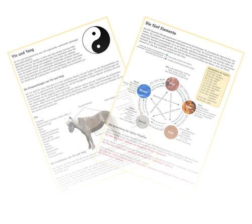 Yin und Yang - Die fünf Elemente
